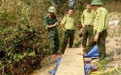 Kiểm điểm trách nhiệm vụ phá rừng ở Phong Nha - Kẻ Bàng