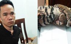 Bắt nghi phạm bán hai con hổ đông lạnh để ngâm rượu