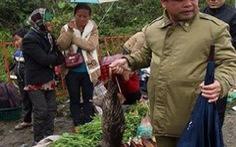 Sa Pa bác bỏ thông tin du khách bị 'gài bẫy' khi mua thú rừng