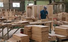 Từ 1-6, gỗ 'lậu' sẽ không được nhập vào châu Âu
