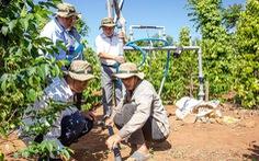 Bayer và các bên liên quan ra mắt giải pháp trồng lại cà phê
