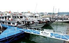Làm rõ việc du khách Nhật tử vong tại cảng quốc tế Tuần Châu