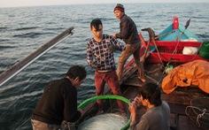 Lao động trên biển cần được xem là nghề đặc thù