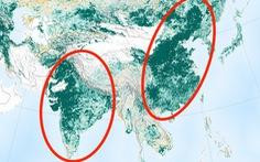 Trái đất xanh hơn 20 năm trước nhờ Trung Quốc, Ấn Độ