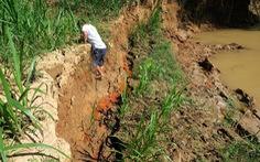 Rút 3 giấy phép khai thác cát do làm hư hại thánh địa Cát Tiên