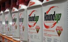 Tòa án yêu cầu công khai mức độc hại của chất diệt cỏ glyphosate