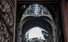 Nhà thờ Đức Bà Paris có thể đổ sập nếu lính cứu hỏa không quên mình...