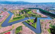 Tuyệt sắc hoa anh đào giữa đất trời Hokkaido Nhật Bản
