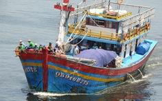 Ngư dân Đà Nẵng được hỗ trợ 90% chi phí mua bảo hiểm tàu