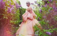 MV mới của Taylor Swift đạt hơn 65 triệu view sau 1 ngày