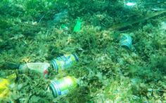 Tàu lớn tỉnh bơ chở khách ra khu cấm, xả rác tràn lan đáy biển