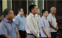 Nguyên công chức Hải quan Cát Lái tiếp tay doanh nghiệp buôn lậu hầu tòa