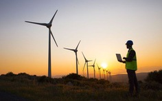 Ông Trump công kích điện gió, tuyên bố turbine gió có thể gây ung thư