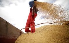 Trung Quốc cho phép mua lại đậu nành và thịt heo Mỹ
