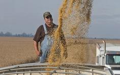 Ông Trump hứa mua lại nông sản của người Mỹ nhiều hơn Trung Quốc