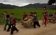 Triều Tiên thừa nhận gặp hạn hán tệ hại nhất