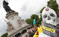 Thuốc diệt cỏ Roundup gây ung thư: bê bối liên tiếp từ 'cục nợ Monsanto'