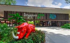 'Singahura - Vui hè Singapore': Trải nghiệm mùa hè cho cả nhà
