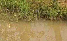 Cứu con 4 tuổi rơi xuống hồ, mẹ mang thai chết cùng con