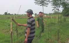 Tạm giữ nghi phạm chặt phá 141 cây gỗ xoan, xà cừ để trả thù cá nhân