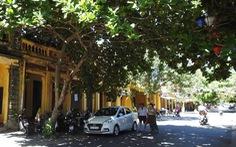Hội An phục dựng Phố văn hóa Việt - Pháp