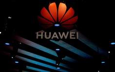 Huawei có hơn 50.000 'bảo bối' để đối phó Mỹ?