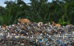 Đến lượt Indonesia trả lại rác cho Mỹ