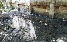 Nông thôn: bức tử sông rạch, án mạng từ cái chuồng heo...