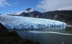 Sông băng ở Chile tan chảy đe dọa đa dạng sinh học biển