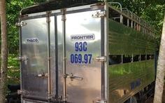 Bắt xe tải chở hơn 2 tấn heo từ vùng dịch đi tiêu thụ