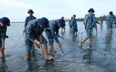Hơn 4.000 chiến sĩ hải quân chung tay làm sạch biển