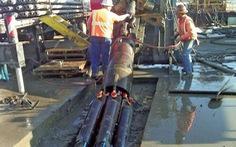 TP.HCM đào đường bằng robot khoan ngầm
