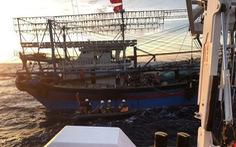 Hải Phòng kêu gọi tàu cá tìm cứu ngư dân Nghệ An gặp nạn