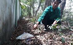 Không khởi tố vụ án phát hiện và chôn hơn 300 thi thể thai nhi ở Cà Mau