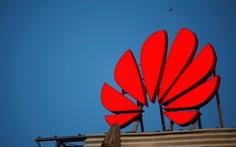 Wall Street Journal: 'Huawei lên kế hoạch sa thải hàng loạt nhân viên ở Mỹ'