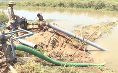 Hàng loạt hồ chứa nước cạn kiệt do nắng nóng kéo dài