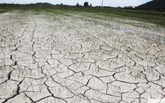 Thủ tướng: Kiên quyết không để người dân thiếu nước sinh hoạt