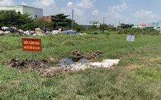Người dân phản ảnh phường chôn heo bệnh gây mùi hôi
