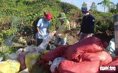 Phạt doanh nghiệp chôn gần 2,4 tấn thuốc bảo vệ thực vật 255 triệu đồng