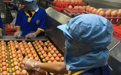 Thịt heo, trứng, rau củ quả nhiều loại giảm giá