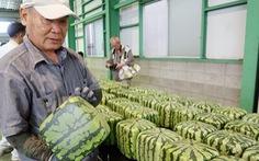 Thành phố nhỏ ở Nhật trồng dưa hấu vuông, bán giá 'khổng lồ'