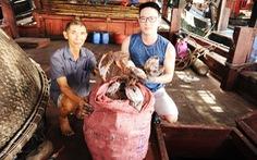 Không xuất được mực khô sang Trung Quốc, tỉnh Quảng Nam 'cầu cứu' các Bộ
