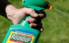 Áo tiên phong cấm thuốc diệt cỏ Roundup