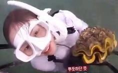 Bắt trái phép sò 'lớn nhất thế giới', diễn viên Hàn đối mặt 4 năm tù ở Thái Lan