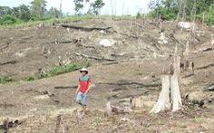 Cảnh cáo 3 nguyên lãnh đạo tỉnh Đắk Nông