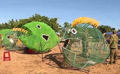 Mô hình độc đáo 'cá biển ăn rác thải nhựa' ở đảo Lý Sơn