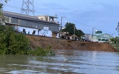 Gần 80m quốc lộ 91 bị rạn nứt đã đổ sụp xuống sông Hậu