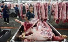 Dịch tả lan rộng, cuối năm nay sẽ thiếu thịt heo?