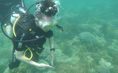 Để người chơi Cuộc đua kỳ thú sờ chạm vào sinh vật biển là chưa đúng