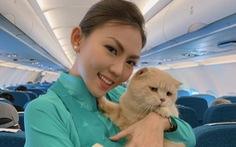 Chú mèo tên... Chó đi máy bay khoang hành khách làm dân mạng choáng váng